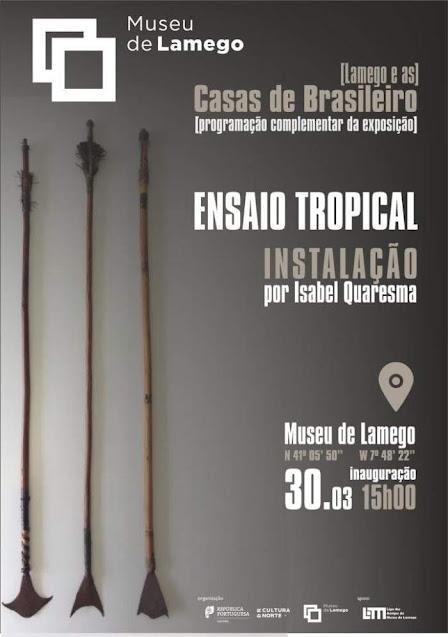 """""""Ensaio Tropical"""" traz arte contemporânea ao museu"""