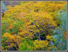 Photo: Near Harbin Springs, CA