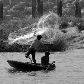 Caught in action by Biswajit Chatterjee - News & Events World Events ( action, fishing, travel )