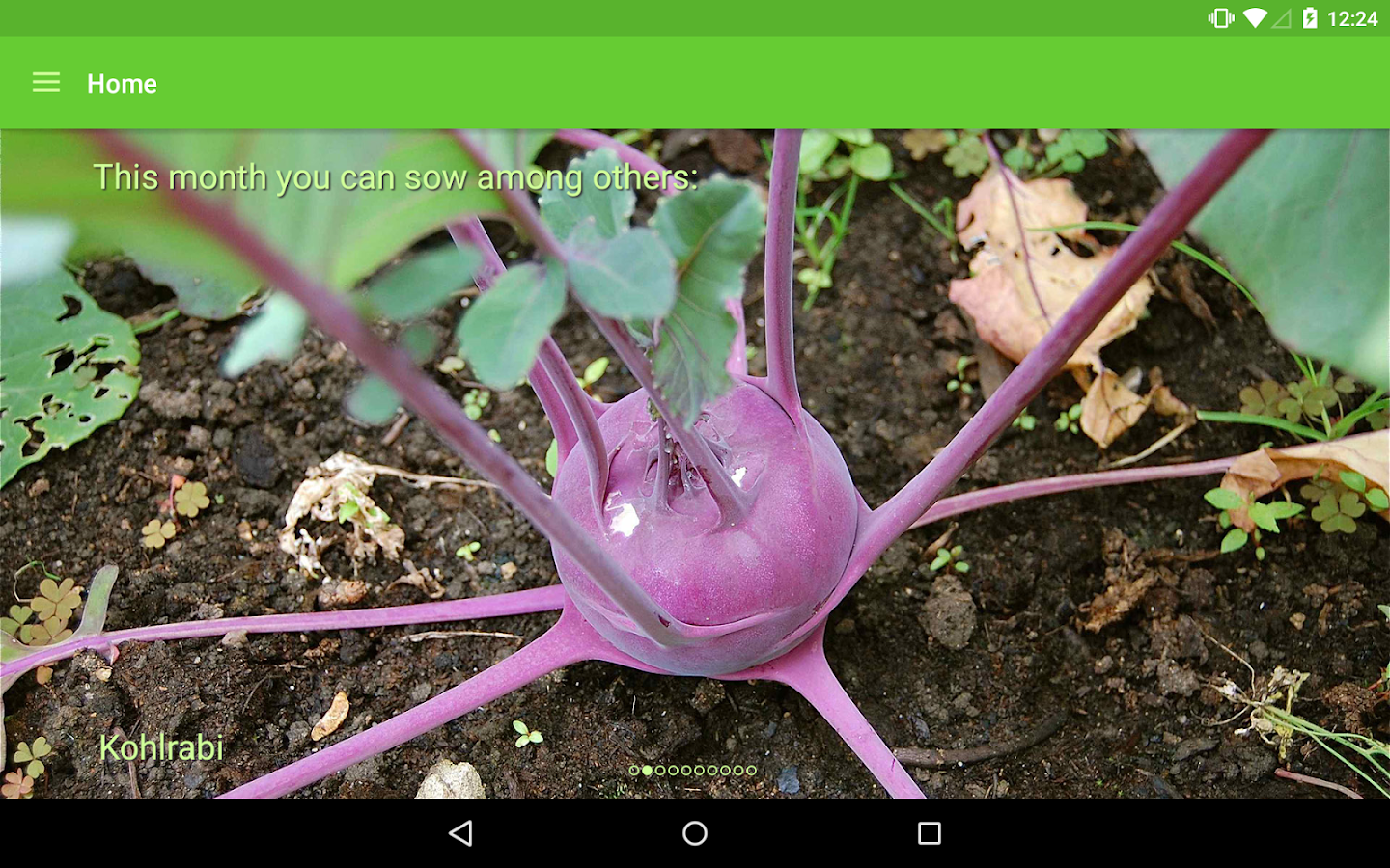 Gardroid - Vegetable Garden- screenshot