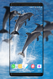 Dolphins Wallpaper - náhled