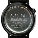 Stainless Steel Watch Face icon