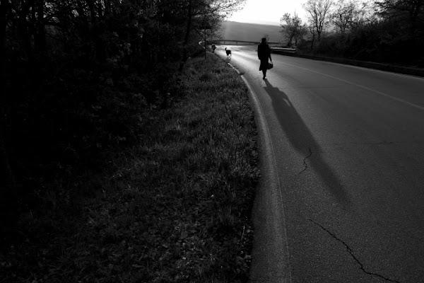 La passeggiata di Dario Pace