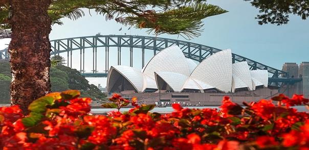 Mùa Xuân rực rỡ của Úc