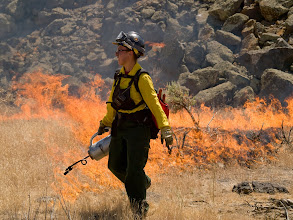 Photo: West Cinder Prescribed Burn, Twin Falls District BLM, Idaho, August 3, 2010, female firefighter, flames, drip torch