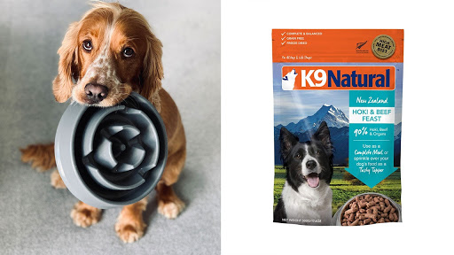 How Does Freeze-Dried Dog Food Stack Up Against the Fresh Kind?
