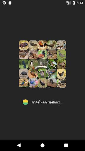 Appp.io - Bird Calls screenshots 1