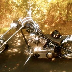 choppah by Phil Ballachino - Transportation Motorcycles