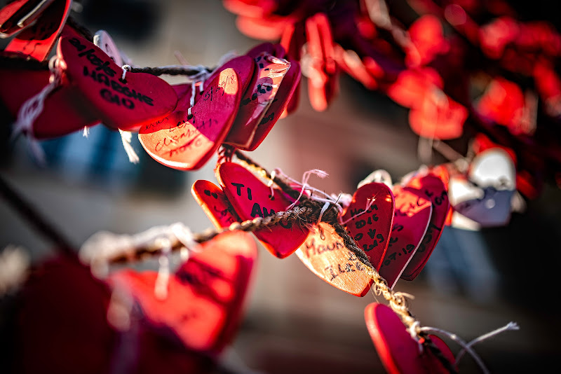 Love is... di Info@walteralberti.it
