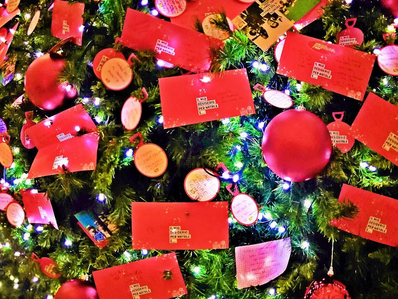Desiderio per il Natale di MaxFelice