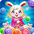 Bunny Bubble Shooter Pop: Magic Match 3 Island icon