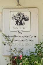 Photo: Plaque at the Moretti Omero winery - note the silhouette of the second oldest olive tree in Italy