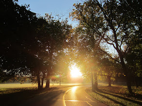 Photo: Golden morning sunlight through the trees and on the road at Eastwood Park in Dayton, Ohio.