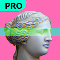Vaporgram Pro 🌴: Vaporwave & Glitch Photo Editor icon