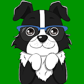 Border Collie Sticker Pack for WhatsApp
