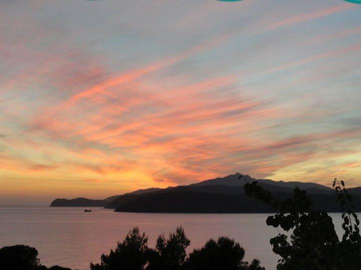 Summer Sunset  di Anastasia Trossi