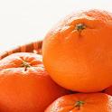 Tangerine Wallpapers icon