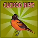 Download Rescue The Cuckoo Bird For PC Windows and Mac
