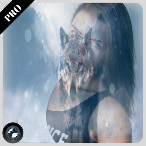 Ice Wolf In Your Image : Photo Montage & Editor