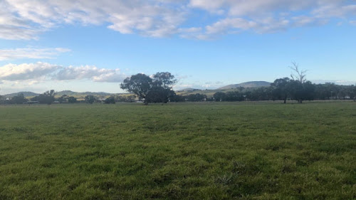 153 Acres Mixed Grazing and Cropping Newstead Victoria