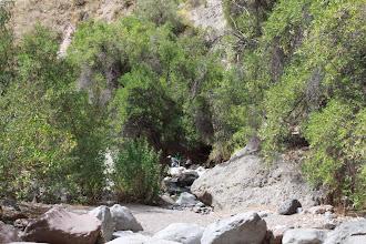 Photo: Fondo del cañón Cañón de Pichirigma Huanca / 18 y 19 de Noviembre (2012) Caylloma