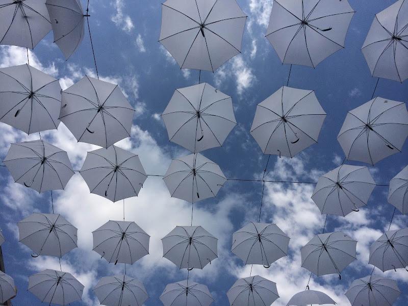Ombrelli a ciel sereno... di IsaRoma