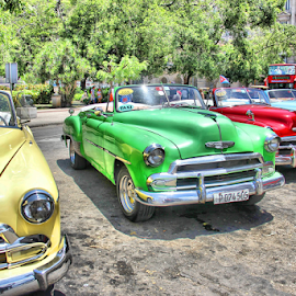 Oldies by Danny Lapierre - Transportation Automobiles ( red, green, blue, car, vintage, yellow, summer, colors, cuba,  )