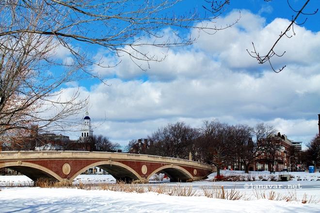 Auswandern: Wie ich eine Wohnung in den USA gefunden habe, Boston, Cambridge