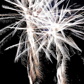 White  feathers by Gordon Simpson - Abstract Fire & Fireworks