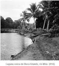 Photo: Paisaje (entrada de mar o río) con potrillos, sobre éstos ver: http://tarabitares-y-divaneos.blogspot.com/2009_10_03_archive.html