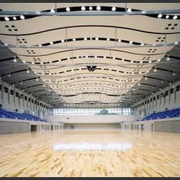 別府市総合体育館「べっぷアリーナ」のメイン画像です