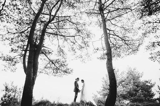 Wedding photographer Pavel Krichko (pkritchko). Photo of 16.12.2013