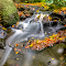 Orange Fall Stream 30 12 17.jpg