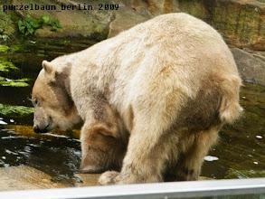Photo: Runter zum kleinen Pool ;-)