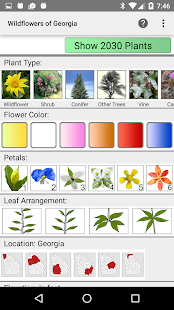 Georgia Wildflowers- screenshot thumbnail