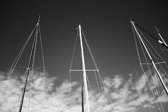 Photo: Masts are Lonely in Winter | Masts at Cadle Creek Marina © 2010 Ryan Lynham