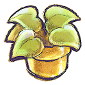 台灣植物標本資料庫 icon