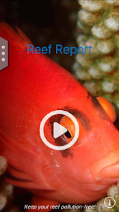 Reef Report- screenshot thumbnail