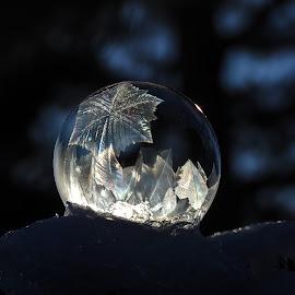 by Ingrid Holm Thorjussen - Nature Up Close Water
