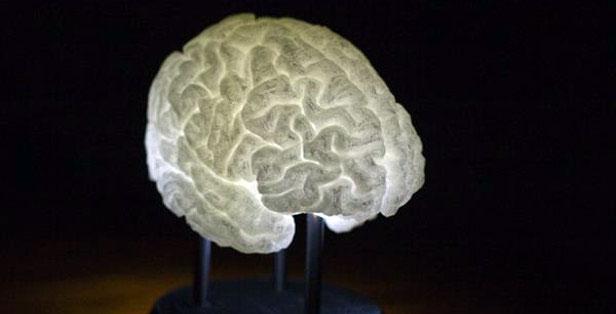 Светящийся мозг