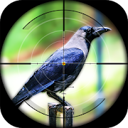 Free Crow Hunting - Forest Sniper Shooting Adventure 18 APK for Windows 8