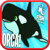 Feed And Grow ORCA Fish