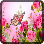 Butterfly Wallpapers for Chat icon