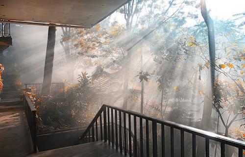 by Hendy Leonardo - Backgrounds Nature
