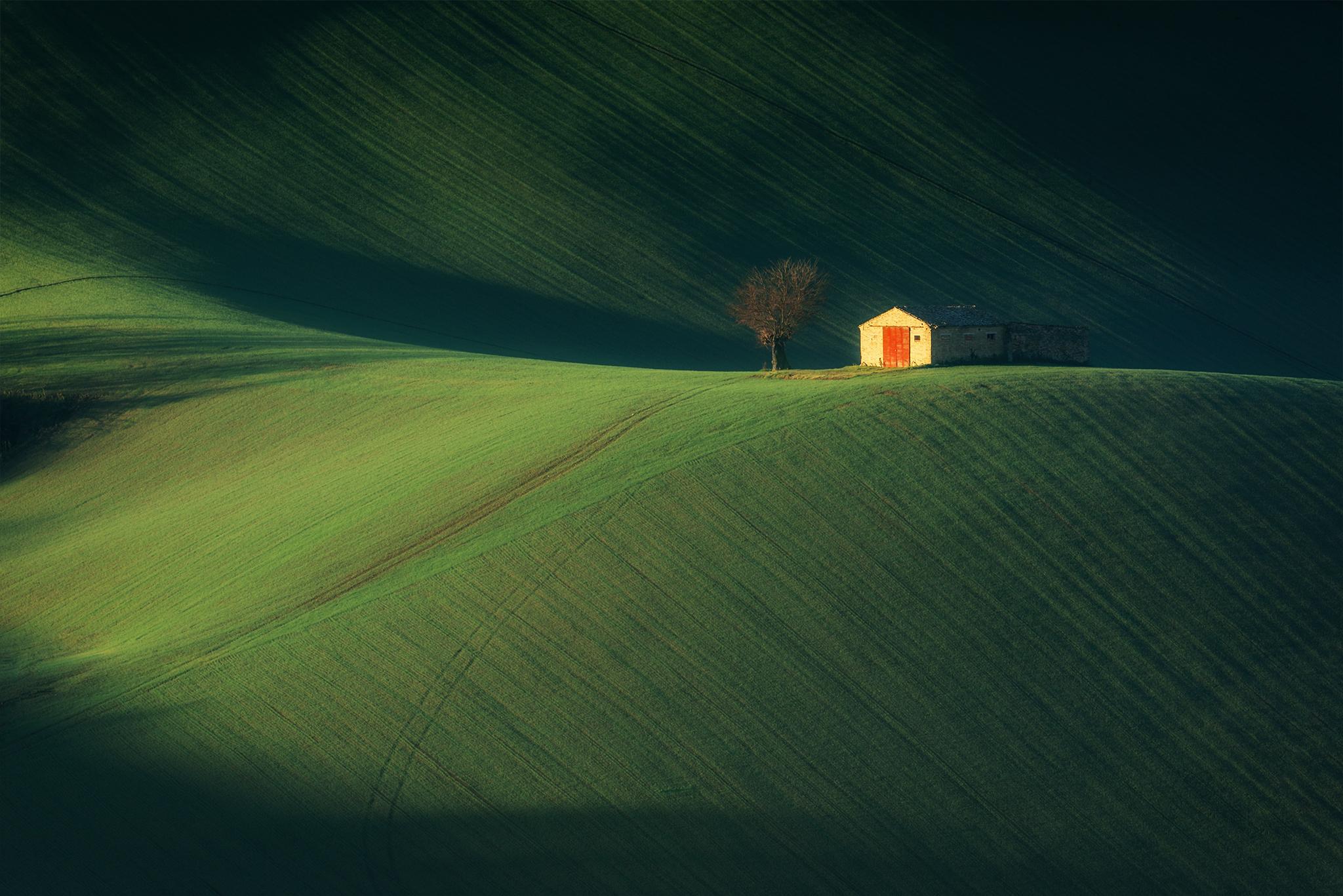 La casetta in Canadà  di Sergio Rapagnà