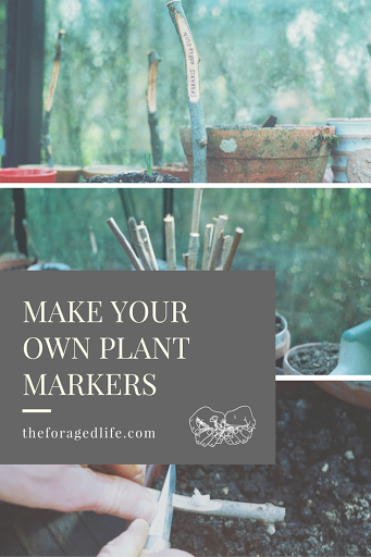 A guide to making your own plant markers for your herbs or anything in the garden. It's easy! | The Foraged Life