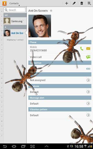 玩免費娛樂APP|下載在屏幕上的蚂蚁好笑的笑话 app不用錢|硬是要APP
