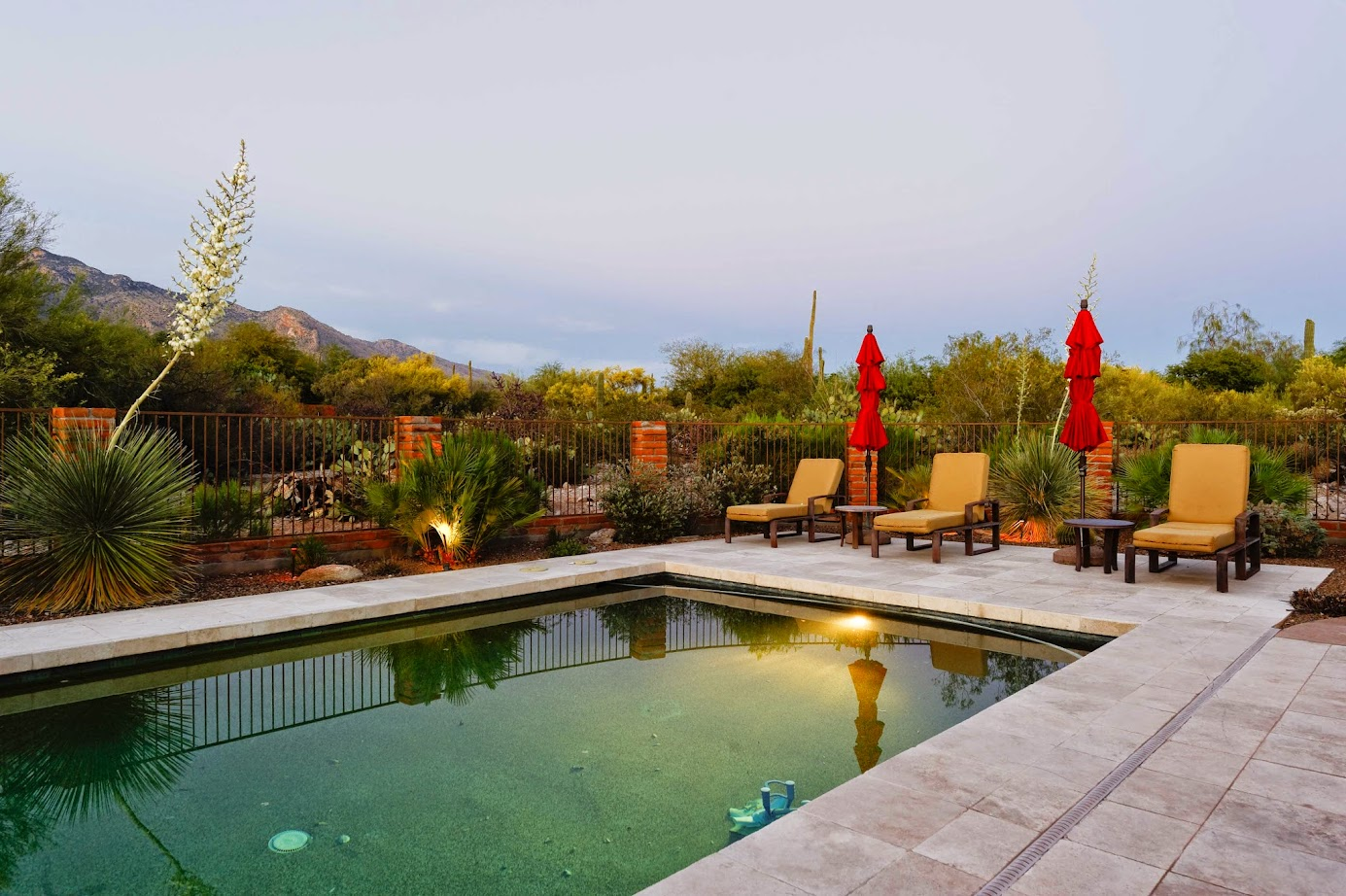 backyard desert home real estate image