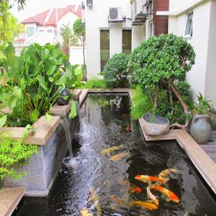 Pool Garden Design - náhled