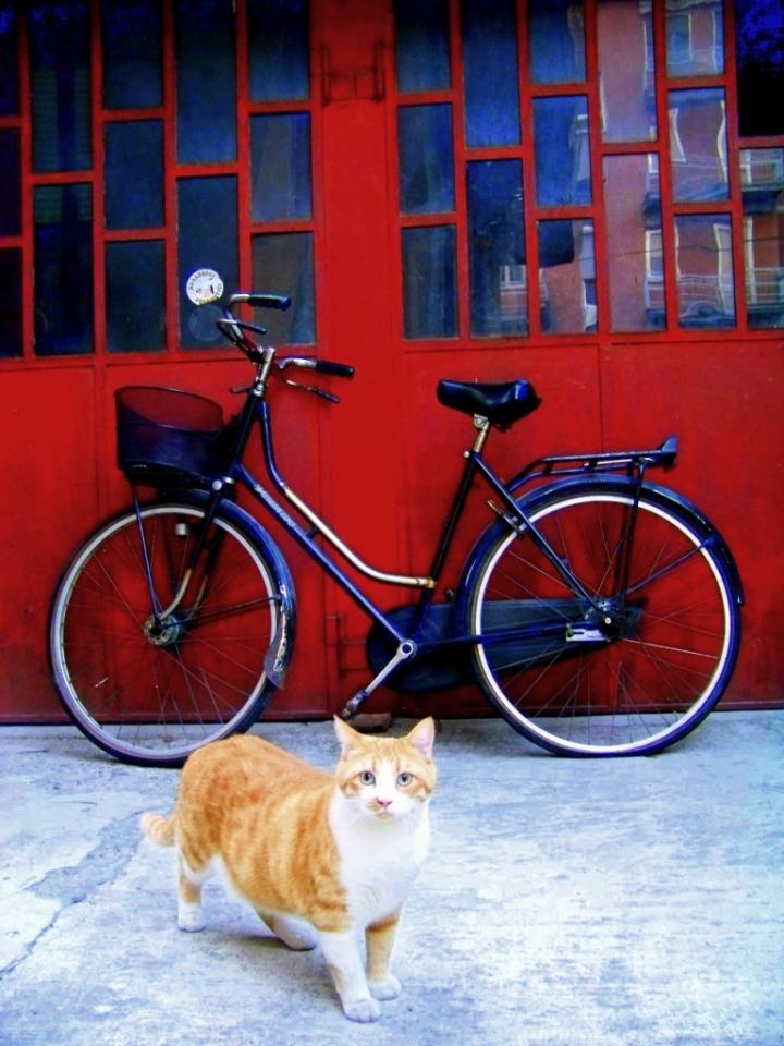 Parcheggio custodito di luigi.bros